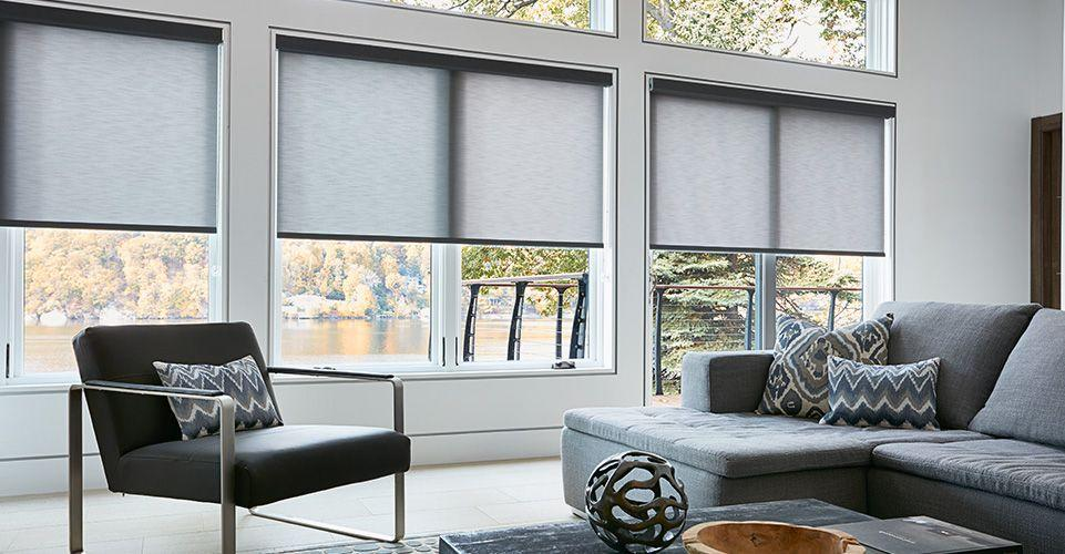 Roller shade blinds are displayed in this modern living room.