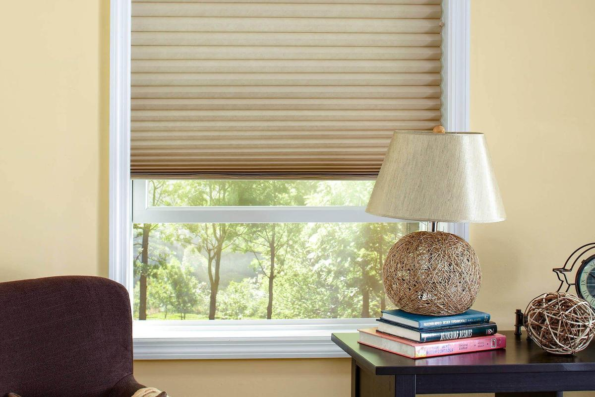Our Classic light filtering cellular window shades helps make gives the office a modern feel