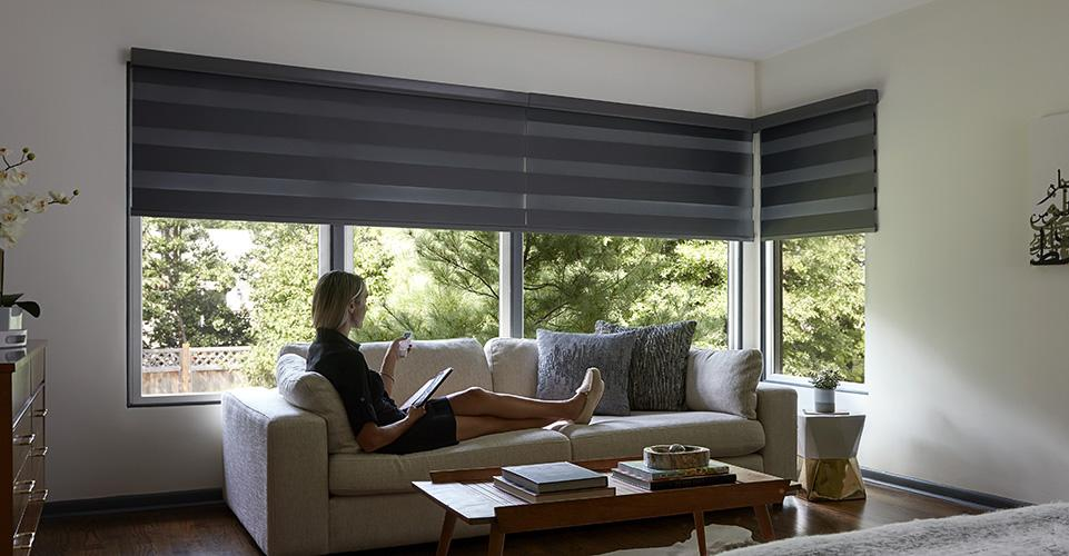 Easily moved shades up and down by adding motorized option to them.