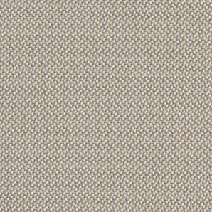 Latte Dubai Solar Shade Swatch