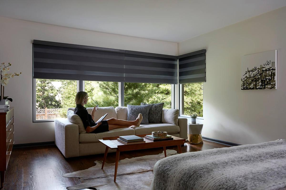 motorized blinds and shades - Motorized Roller Shades