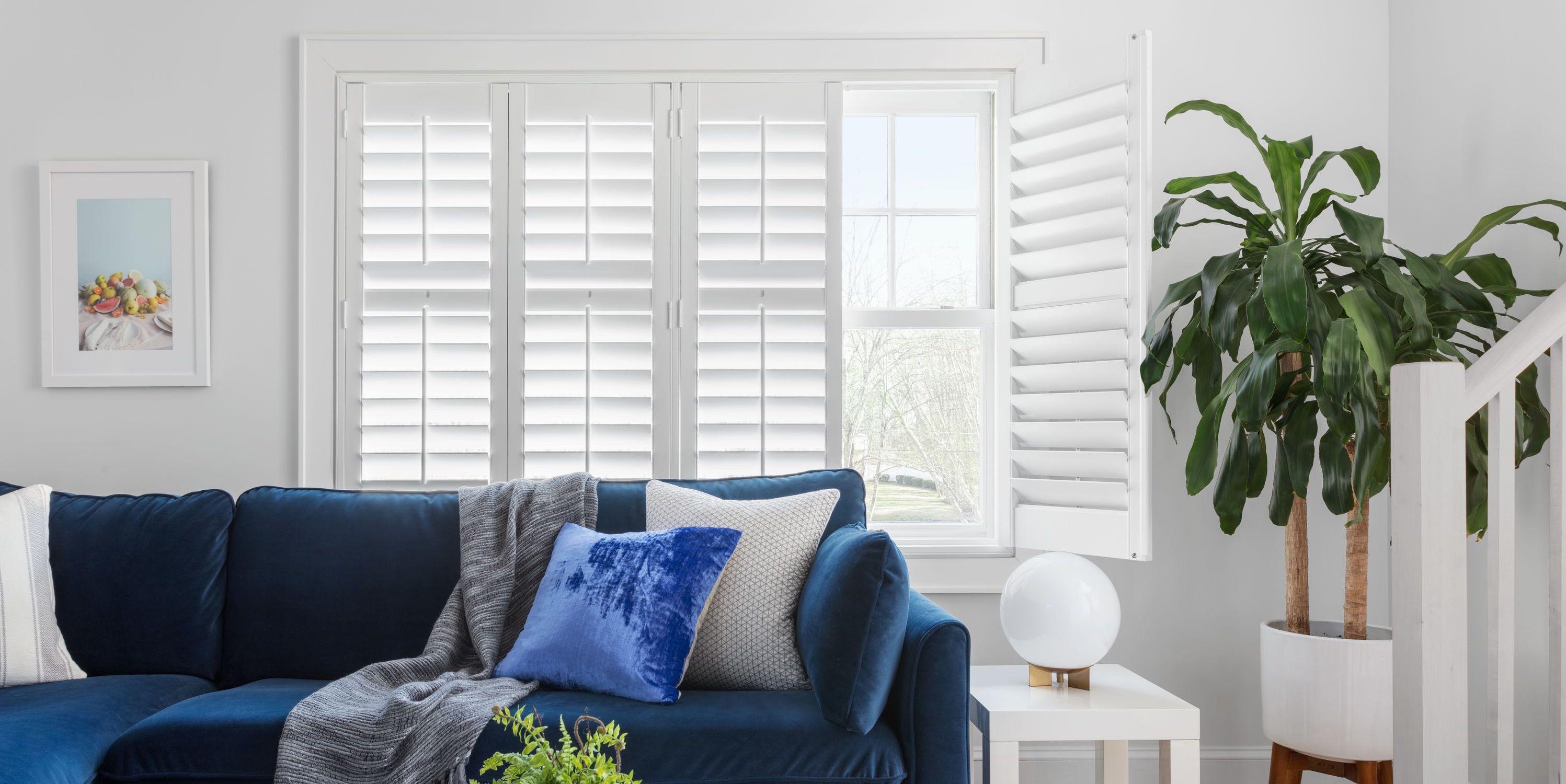 Une grande fenêtre située à l'arrière d'un sofa de velours bleu dans salon au cachet contemporain est décorée avec de belles persiennes installées dans le cadrage.
