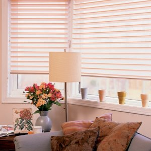 Serenity Blinds To Go